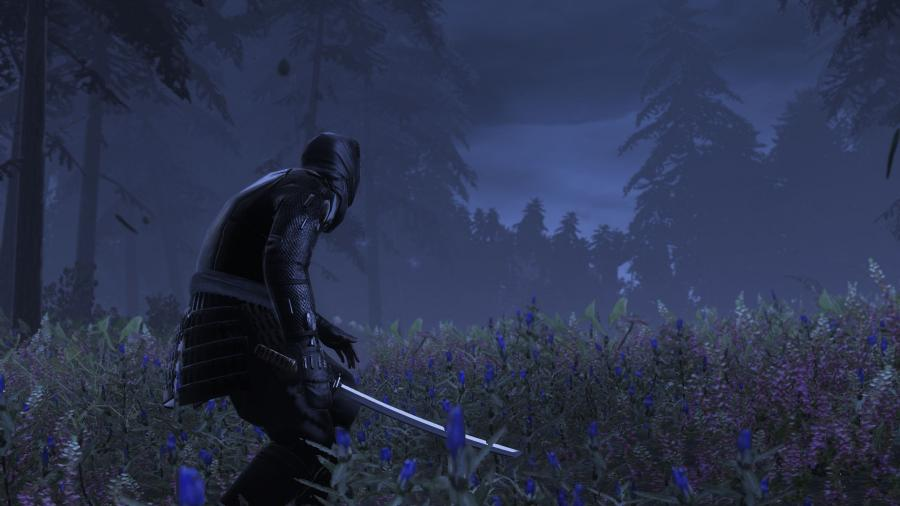 Total War Shogun 2 Collection Screenshot 9