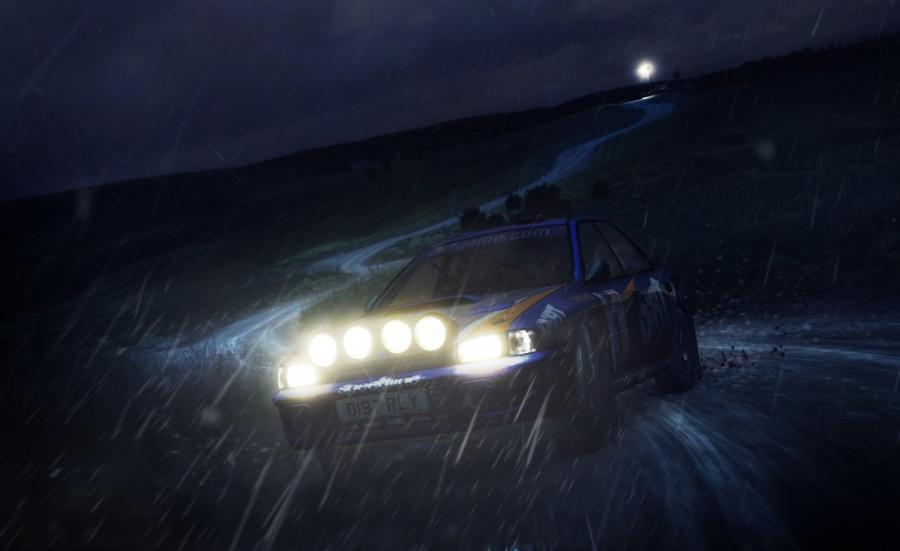 DiRT Rally Screenshot 9
