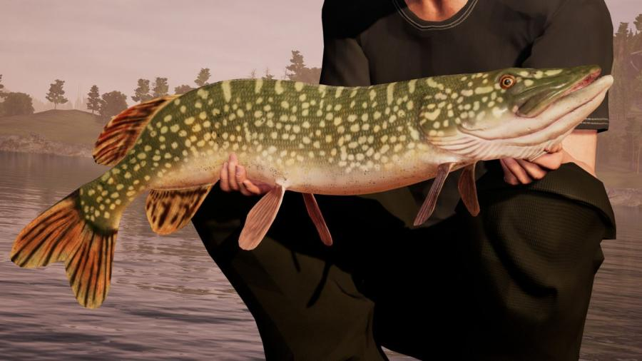 Fishing Sim World Screenshot 5